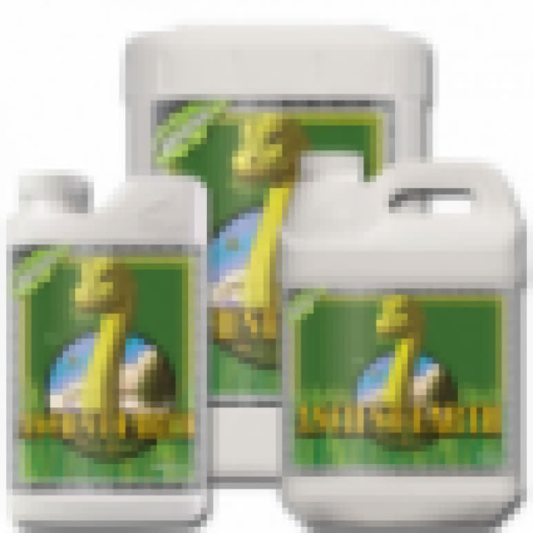 Advanced Nutrients Sensi Grow A + B - Basisdünger