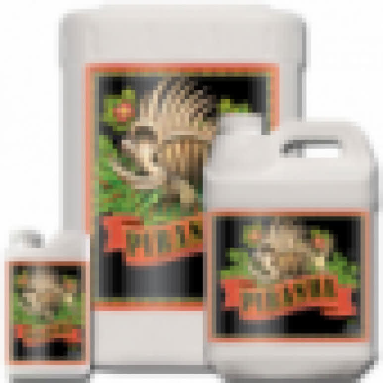 Advanced Nutrients Big Bud Coco 1 Liter - Blütenstimulator