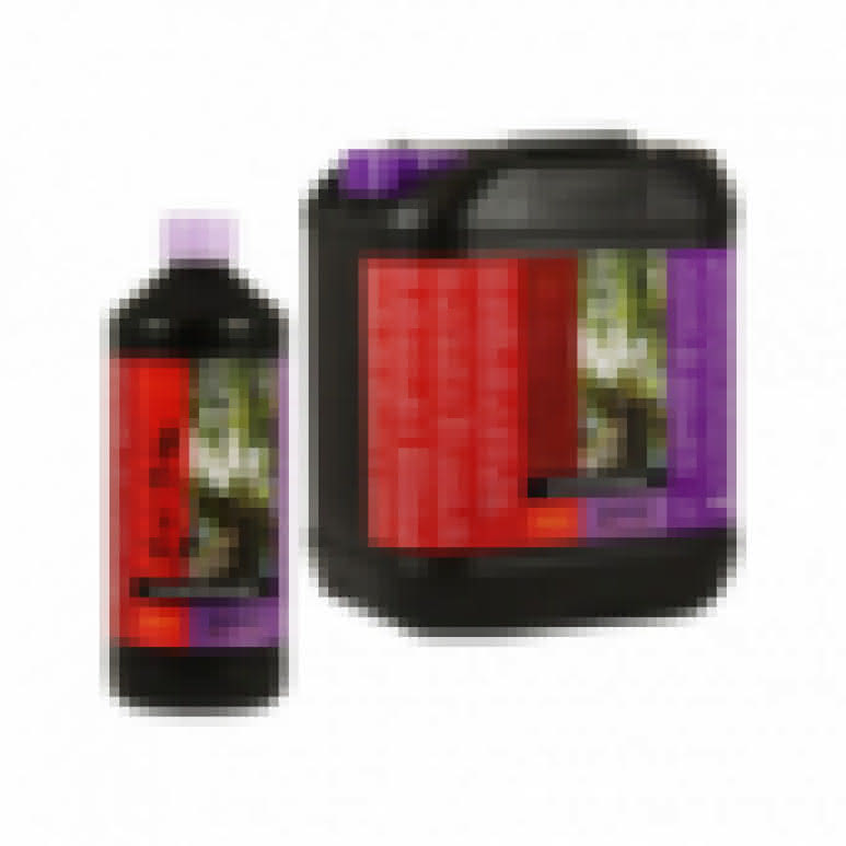 B-CUZZ Silic Boost 100ml - Siliziumbooster