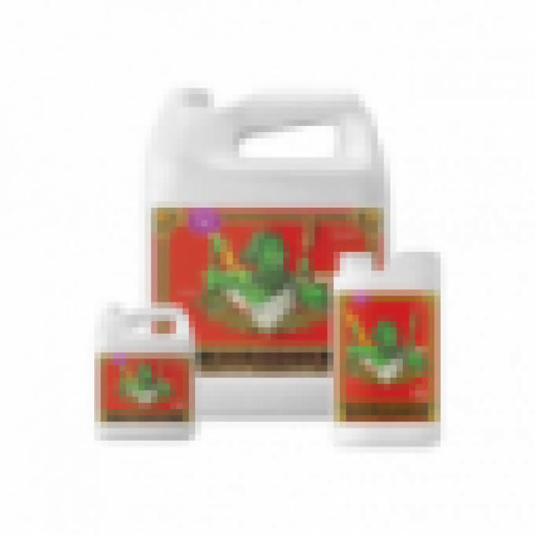 Advanced Nutrients Connoisseur Bloom A+B je 10 Liter - Basisdünger