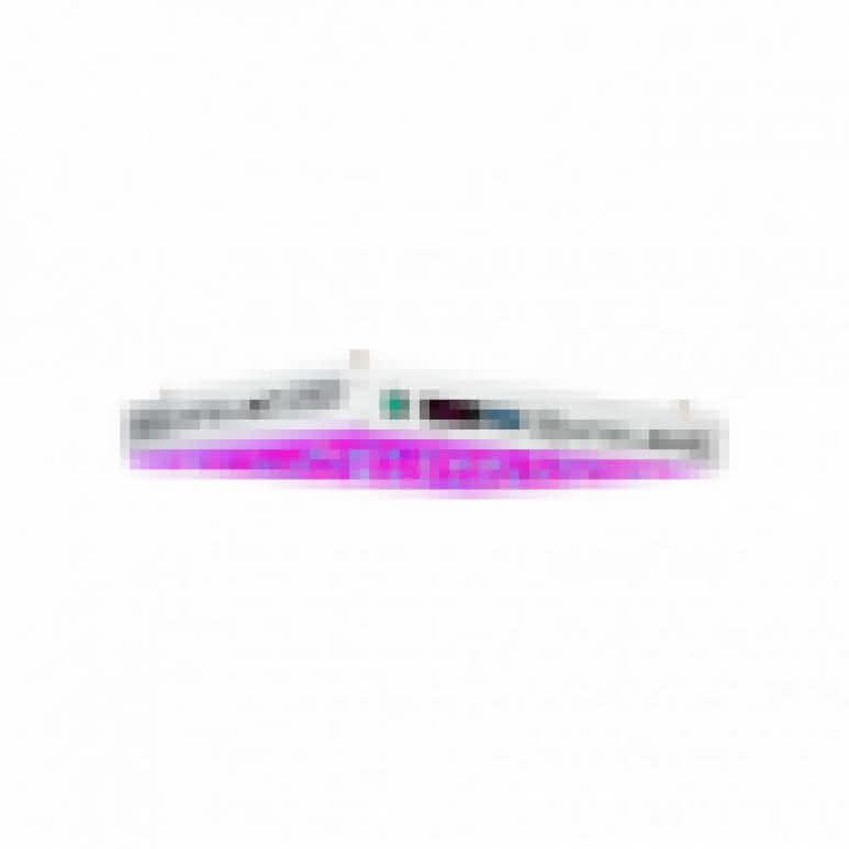 HOMEbox® Evolution R240 - 240x120x200cm