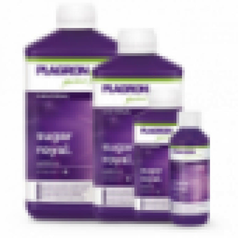Plagron pH Minus 1 Liter - pH Regulator