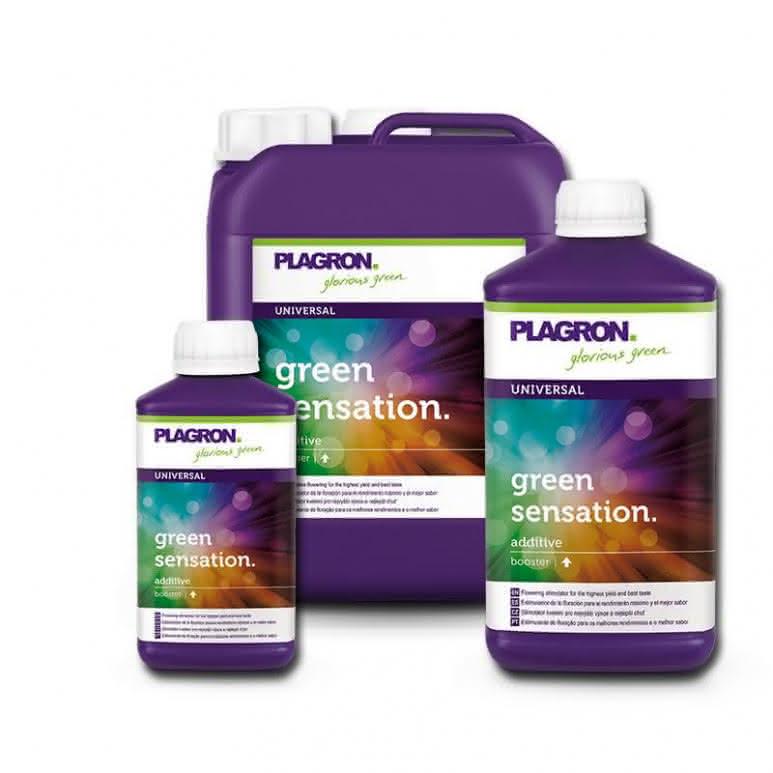 Plagron Green Sensation - Blütenstimulator