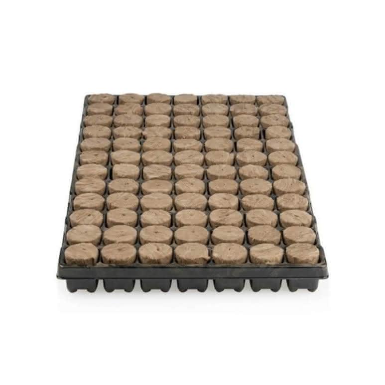 Speedgrow® Stecklingstray 38mm rund - 84 Stück