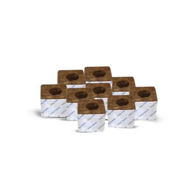 Speedgrow® Kulturblock 10x10x6,5cm - 38/35mm