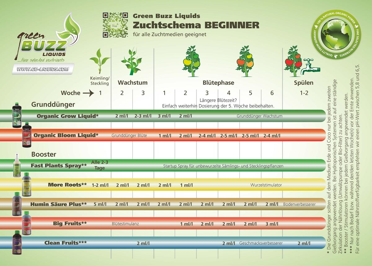 Green Buzz Liquids Zuchtschema Beginner